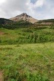 Weiden, bossen en berg stock afbeeldingen