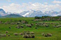 Weiden, bossen en bergen royalty-vrije stock foto