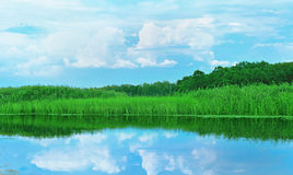 Weiden, bossen en blauwe hemel met wolken in het water Stock Fotografie