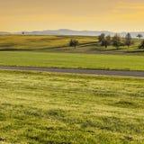 Weiden in der Schweiz bei Sonnenaufgang Lizenzfreie Stockfotografie