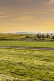 Weiden in der Schweiz bei Sonnenaufgang Stockfoto