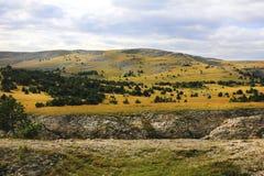 Weiden en bossen in de bergen Stock Afbeeldingen