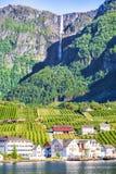 Weiden en dorp op Hardanger Fiord Stock Afbeelding