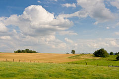 Weiden en gebieden stock fotografie