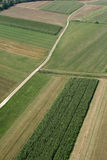 Weiden en gebieden stock foto