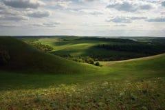 Weiden en gebieden van Rusland stock afbeeldingen