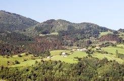 Weiden in landelijk dorp royalty-vrije stock foto's