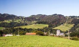 Weiden in landelijk dorp royalty-vrije stock fotografie