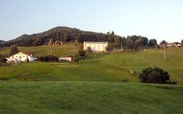 Weiden in landelijk dorp stock foto