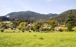 Weiden in landelijk dorp royalty-vrije stock afbeelding