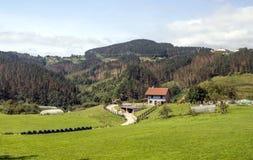 Weiden in landelijk dorp stock fotografie