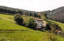 Weiden in landelijk dorp stock afbeeldingen