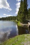 Weiden, meren en rivieren in het Nationale Park van Yellowstone royalty-vrije stock foto
