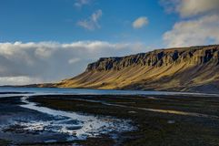 Weiden met zwart strand in IJsland tijdens gouden uurzonsondergang royalty-vrije stock foto