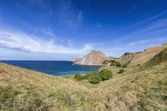 Weiden op Pulau Padar stock afbeeldingen