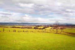 Weiden unter malerischem Himmel in West-Lothian, Schottland Stockbild