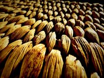Weidenkorb-Deckel Stockfoto