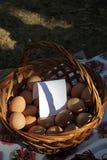 Weidenkorb mit Eiern stockbild