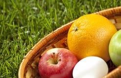 Weidenkorb mit Früchten und Eiern auf Gras Lizenzfreies Stockfoto