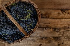 Weidenkorb voll von Weinreben stockfotografie