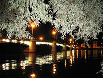 Weidenniederlassungen und eine Ansicht der Brücke nachts Lizenzfreies Stockbild