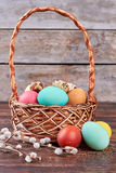 Weidenniederlassungen und gefärbte Eier Lizenzfreies Stockfoto