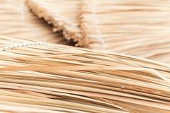 Weidenstrohregenschirm-Nahaufnahmehintergrund Lizenzfreies Stockfoto
