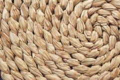 Weidenstrudel Lizenzfreie Stockfotos
