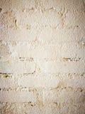 Weiße Backsteinmauer Stockfoto