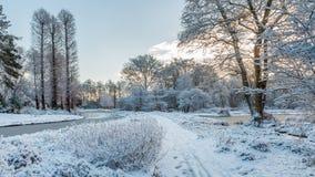 Weiße Gartenlandschaft umfasst durch frisch gefallenen Schnee Stockfotos