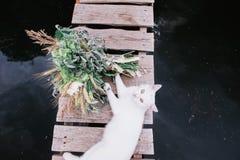 Weiße Katze und ein Hochzeitsblumenstrauß Stockfotografie
