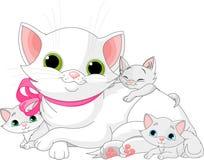 Weiße Katzefamilie Stockfotos