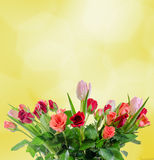 Weiße, orange, rote und gelbe Rosen blüht, Blumenstrauß, Blumengesteck, der gelbe Hintergrund, lokalisiert Lizenzfreie Stockbilder