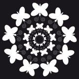 Weiße Schmetterlinge auf schwarzem Hintergrund Lizenzfreie Stockbilder