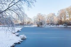 Weiße Winterlandschaft im Garten mit Bäumen und gefrorenem Teich Stockfotografie