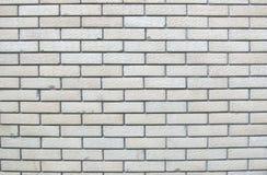 Weiße Ziegelsteine Stockbilder