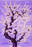 Weißer Baum in der Blüte, malend Lizenzfreie Stockfotos