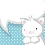 Weißer netter kleiner Miezekatzebabyblauhintergrund Stockbilder