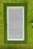 Weißes Fenster auf grüner strukturierter Wand Stockfoto