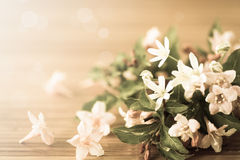 Weigel beautiful  flowers Royalty Free Stock Photography