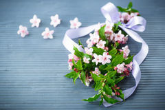 Weigel beautiful pink flowers Stock Image