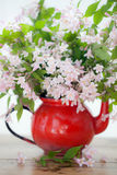 Weigela Pink flowers. In red jug Royalty Free Stock Photography
