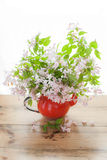 Weigela Pink flowers. In red jug Stock Photo