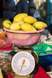 Weighing mango Stock Images