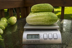 Weighing Produce At A Roadside Stand Stock Image
