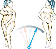 Weight Control. A metaphorical image showing a plump heavy woman turning to a slim woman Stock Illustration