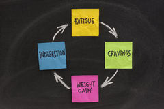 Weight gain cycle. Fatigue, cravings, weight gain, indigestion cycle presented on blackboard with sticky notes and white chalk Stock Image