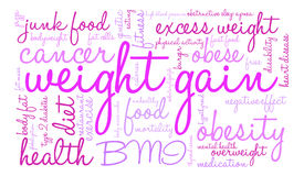 Weight Gain Word Cloud Royalty Free Stock Image