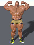 Weight lifter  Stock Photography