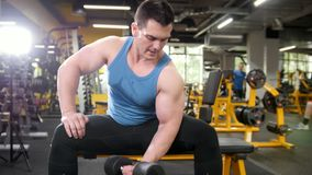 Weight-lifting in the gym - muscular athlete performs training for biceps with dumbbells. Close up shot stock video footage